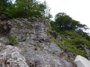 落石発生源対策